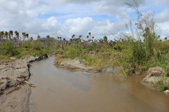 Vanuatu Cyclone Pam Stock Photography