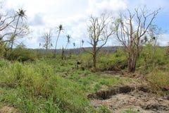 Vanuatu Cyclone Pam Royalty Free Stock Photography