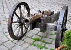 Vapen - gammal kanon Royaltyfri Foto