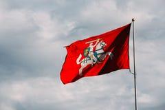 Vapensköld av Litauen på tillståndet som är historisk, flagga av Litauen, Royaltyfria Bilder