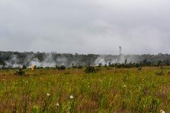 Vapeurs et végétation chez Kilauea, Hawaï Photos libres de droits