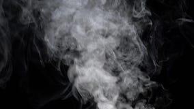 Vapor against black background. Slow motion. White incense vapor against black background. Slow motion stock video