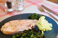 Vapor cooked salmon. A simple dish with a vapor cooked salmon steak and vegetables Stock Image