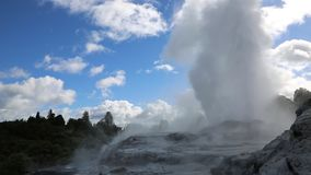 Vapor and geyser. Te Puia geothermal valley - Rotorua, New Zealand stock footage