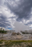 Vapor vomitando do geyser imagens de stock