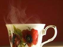 Vaporating cup of tea Stock Photography
