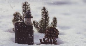 Vapore di inverno Immagine Stock