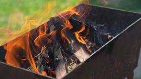 Vapore e legna da ardere all'aperto video d archivio