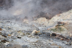 Vapore geotermico Fotografia Stock