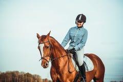 Vaqueira e cavalo Fotos de Stock Royalty Free