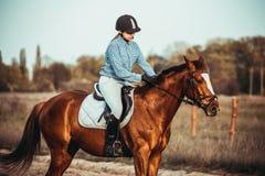 Vaqueira e cavalo Fotos de Stock