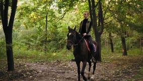 A vaqueira nova monta um cavalo durante o dia ensolarado na floresta que galopa na floresta video estoque
