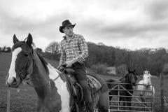 Vaqueiro a cavalo, equitação com a camisa chequered com outros cavalos, uma porta, campo e casa de campo da pedra no fundo fotos de stock