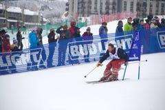 Vaqueiro Downhill Stampede fotografia de stock