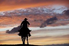 Vaqueiro em um cavalo Foto de Stock
