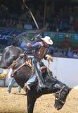 Vaqueiro no rodeio Fotografia de Stock