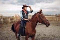 Vaqueiro que monta um cavalo no país de texas, bar foto de stock