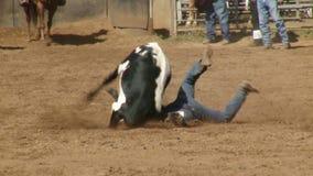 Vaqueiros do rodeio - luta romana do boi de Bulldogging no movimento lento - grampo 4 de 9