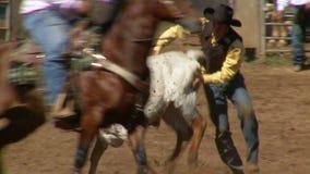 Vaqueiros do rodeio - luta romana do boi de Bulldogging no movimento lento - grampo 7 de 9