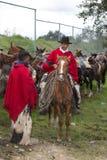 Vaqueiros em Equador em um rodeio rural Imagem de Stock Royalty Free