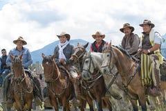Vaqueiros em um evento rural do rodeio em Equador Fotos de Stock Royalty Free