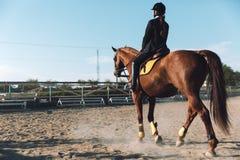Vaquera joven asombrosa que se sienta en caballo al aire libre Foto de archivo libre de regalías