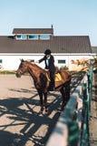 Vaquera joven asombrosa que se sienta en caballo al aire libre Fotografía de archivo