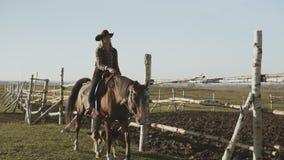 Vaquera joven en el caballo marrón Caballo de montar a caballo hermoso de la mujer con el perro a lo largo de la cerca metrajes