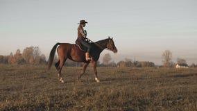 Vaquera joven en el caballo marrón en el lento-MES al aire libre Caballo de montar a caballo hermoso de la mujer almacen de metraje de vídeo