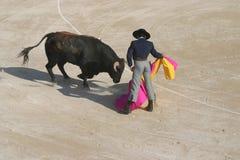 Vaqueras para siempre Fotografía de archivo libre de regalías