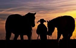 Vaquero con los caballos Fotografía de archivo