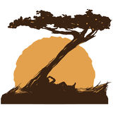 Vaquero debajo del árbol Fotografía de archivo libre de regalías