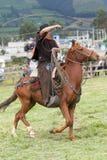 Vaquero en Ecuador que maneja el lazo Imagenes de archivo