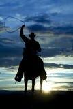 Vaquero en roping de la cara del caballo Foto de archivo libre de regalías