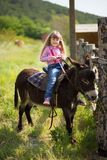 Vaquero hermoso de la muchacha del fermer lindo en vaqueros que disfruta de día de verano en vida del pueblo con las flores que l Imagen de archivo libre de regalías