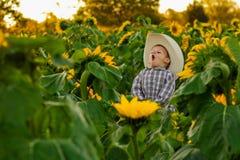 Vaquero joven Crowing en remiendo del girasol Foto de archivo libre de regalías