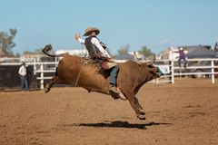 Vaquero Riding Bucking Bull en el rodeo del país foto de archivo libre de regalías