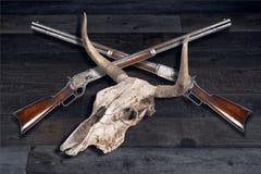 Vaquero Rifles y cráneo de la vaca Fotografía de archivo