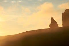 Vaquero silueteado contra la salida del sol Foto de archivo libre de regalías