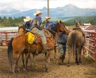 Vaqueros cubiertos con fango en un rodeo en Colorado Fotos de archivo