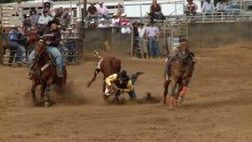 Vaqueros del rodeo - buey de Bulldogging que lucha en la cámara lenta - clip 6 de 9 metrajes