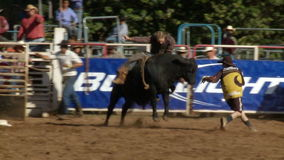 Vaqueros del rodeo - montar a caballo de Bull en la cámara lenta - clip 5 de 12 metrajes