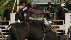 Vaqueros del rodeo - montar a caballo de Bull en la cámara lenta - clip 2 de 12 almacen de metraje de vídeo