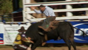 Vaqueros del rodeo - montar a caballo de Bull en la cámara lenta - clip 6 de 12 almacen de metraje de vídeo