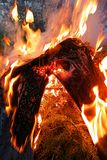 Vaqueros en el fuego Fotos de archivo