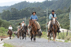 Vaqueros en la parte posterior del caballo en Ecuador Imagen de archivo libre de regalías