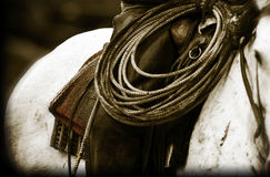 Vaqueros silla de montar y cuerda del forraje fotos de archivo libres de regalías