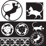 Vaquinha, gato Imagem de Stock Royalty Free