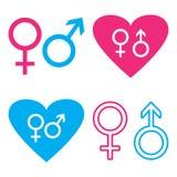 Varón azul y rosado y símbolos femeninos Vector libre illustration