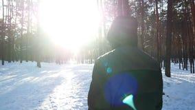 Varón del bosque del invierno almacen de video